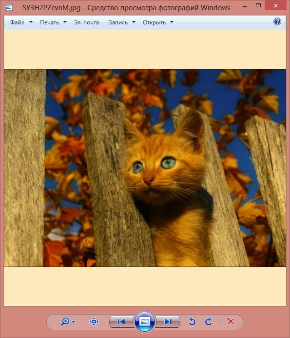 Програмку для просмотра изображений в windows 7